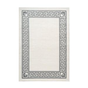 Pierre Cardin Paris 501 Ezüst Szőnyeg