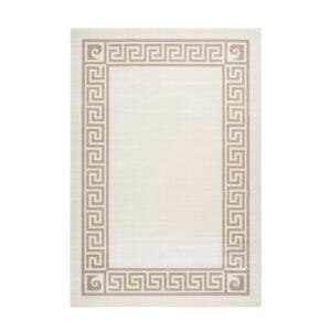 PIERRE CARDIN PARIS 501 taupe szőnyeg